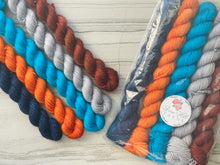 Load image into Gallery viewer, Long Way Home Mini skein Set
