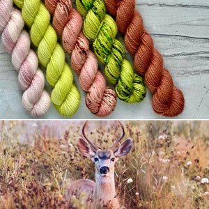 Meadow Mini skein Set