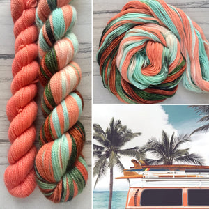Point Break Half skein set- Fingering