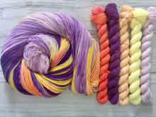 Load image into Gallery viewer, Van-Halla Mini Skein set - Fingering