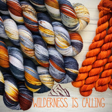 Load image into Gallery viewer, November yarn club  Wilderness is Calling