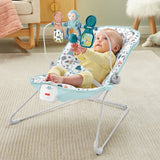 This Fisher Price Baby Bouncer gently bounces to your little one's natural movements and features calming vibrations