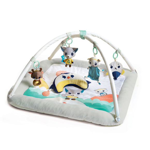 The Plush 'Winter Wonderland' activity baby mat takes you among the snowy hills into the arctic landscapes.