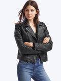 Leather multi-seam moto jacket