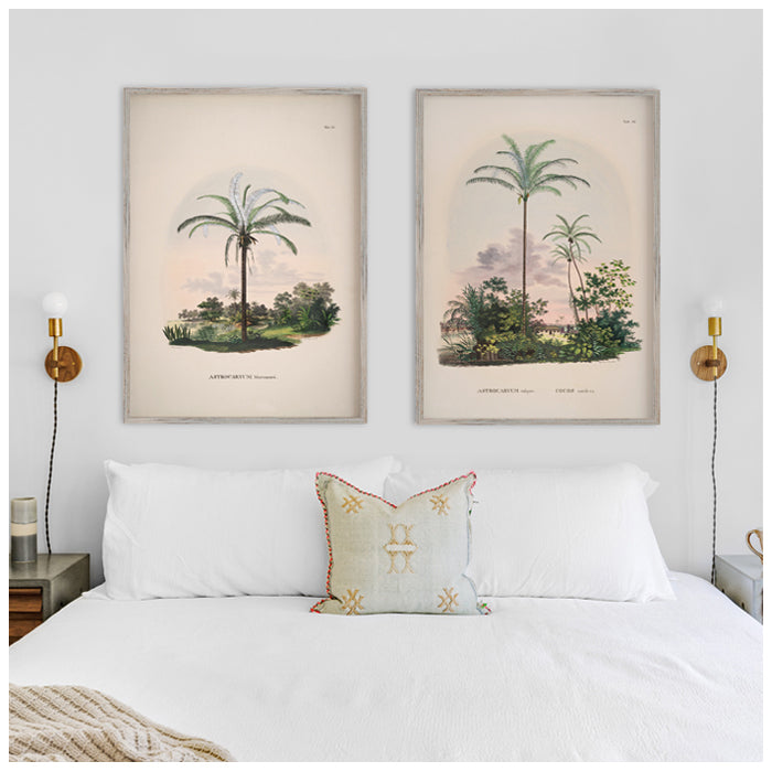 Vintage palm tree prints
