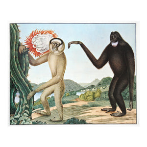 Vintage wall art for kids room Gibbons