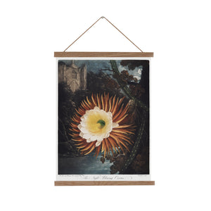 Night blowing cereus canvas wall cahrt