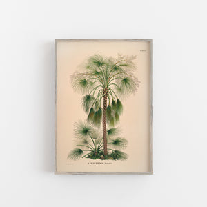 Sand palm tree wall art