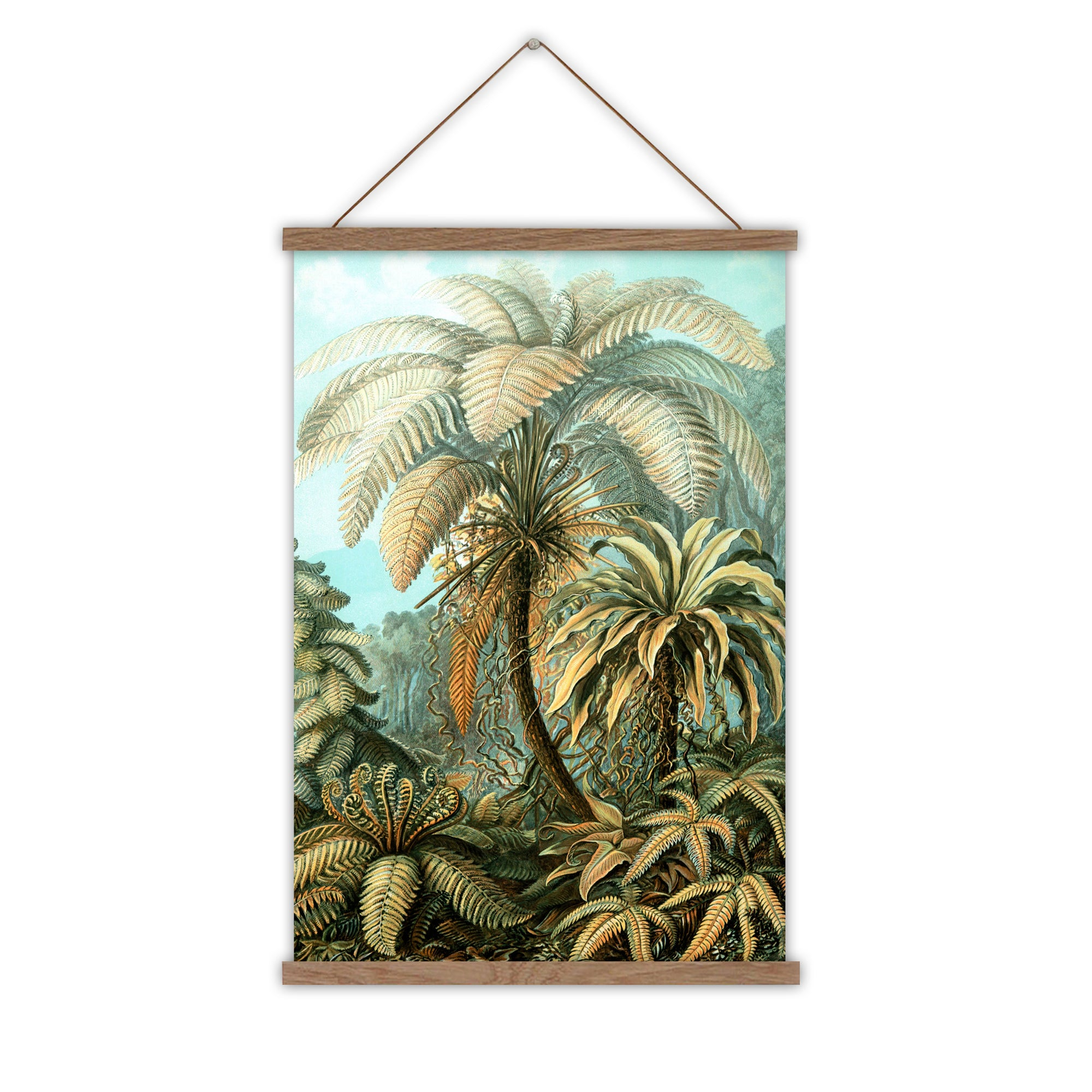 Ernst haeckel palm canvas wall chart