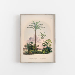 vintage palm tree wall art