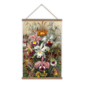 Orchids Ernst Haeckel vintage canvas wall chart