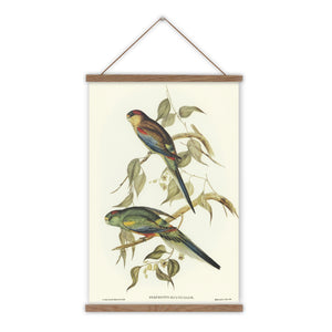 Vintage parakeet bird canvas wall chart