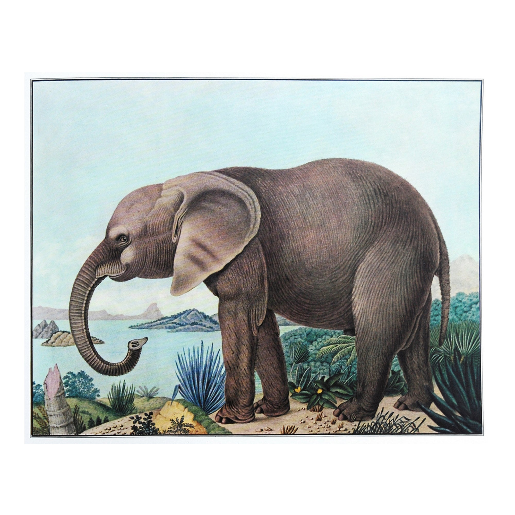 Vintage kids room print elephant