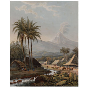Volcano vintage tropical palm tree print