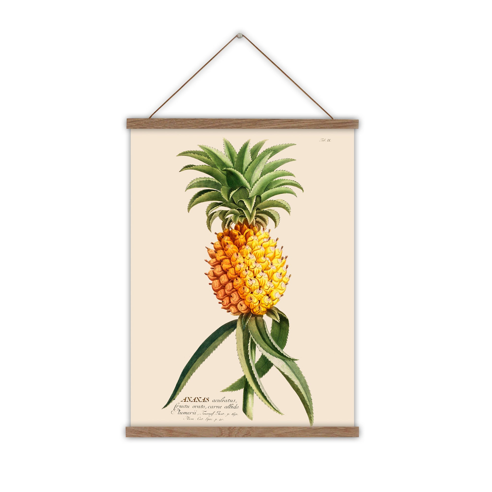 pineapple wall chart