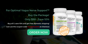 parasym plus, vagus nerve support, soothing digestive aid, digestive enzymes, thera ph, beta balance, parasympathetic nervous system, vagus nerve, nerve support, tj nutrition, Vagus nerve support digestive enzymes