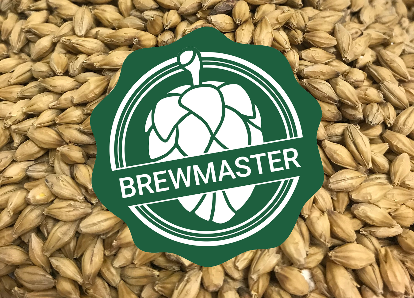 Brewmaster Malt to brew beer at home