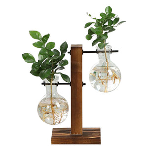 Plant Vases With Wooden Frame Glass Tabletop Decor