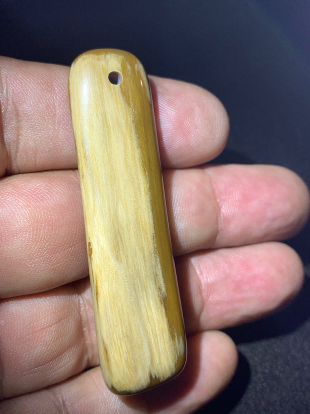 Agatized Wood Pendant - South Dakota