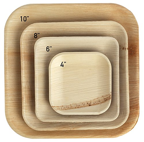 "Biodegradable Palm Leaf Disposable Bamboo Style Square Plates 4"" (Pack of 25)"