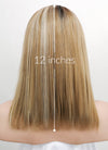 Mixed Blonde With Dark Roots Straight Bob Lace Front Synthetic Wig LF837I