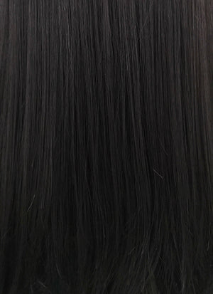 Straight Jet Black Lace Front Synthetic Wig LFB002