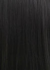 Straight Yaki Jet Black Lace Front Synthetic Wig LF701R
