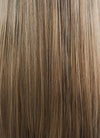 Brown Blonde Ombre Straight Synthetic Wig NS019