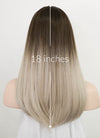 Brown Ash Blonde Ombre Straight Synthetic Wig NS229