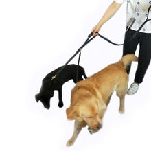 Adjustable Nylon Pet Dog Walking Leash 2.0CM Double-sided Reflective Lead D-shape Hook Leash Multifunctional Pet Lead