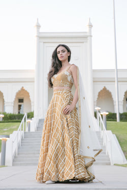 Dusty gold floral/polka dot blouse, stripe lehenga