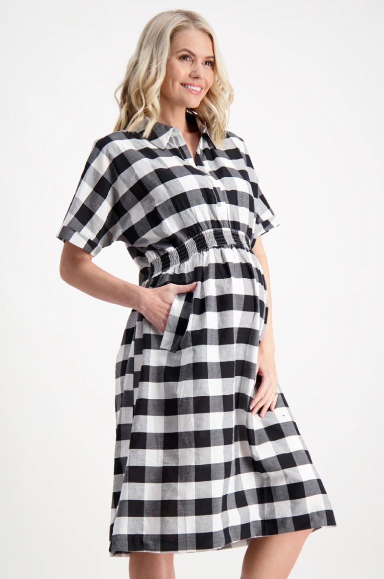 Maive & Bo 'Audrey Shirt Dress' in Gingham