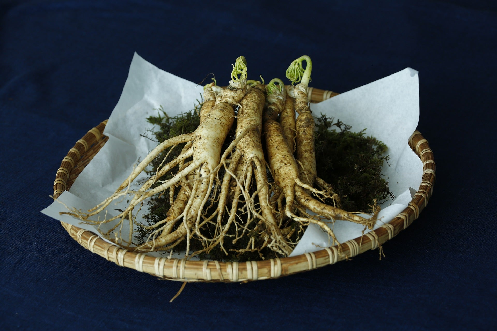 Many positive effects are attributed to the ginseng root
