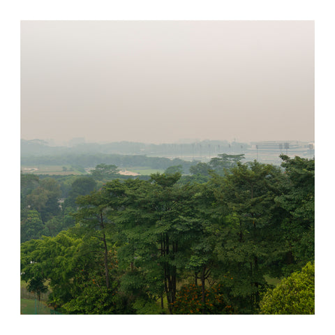 Hazy view of a forested area in Singapore