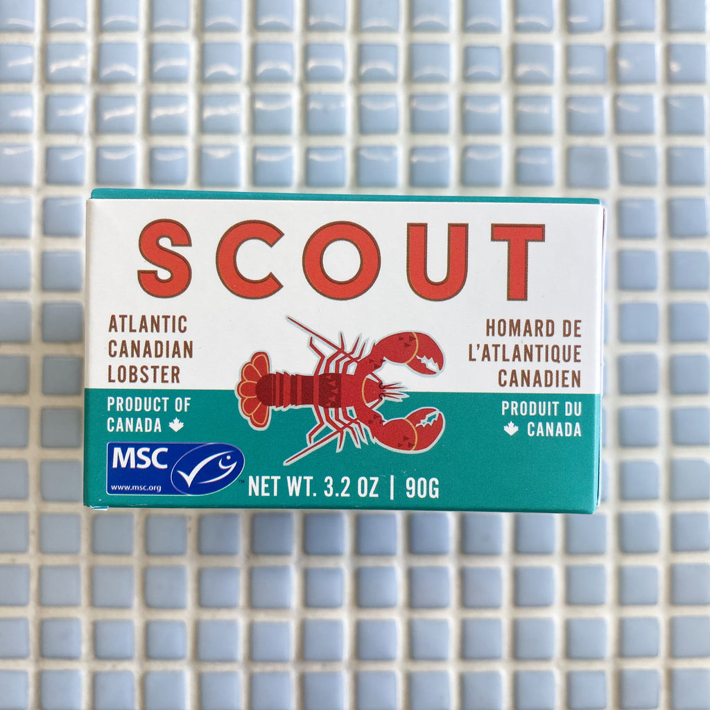 scout canning atlantic canadian lobster