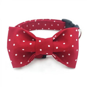Red Polka Dot Dog Collar - Designer Collars,Bowties,Flower Sets for Cats & Dogs - The Paw Empire