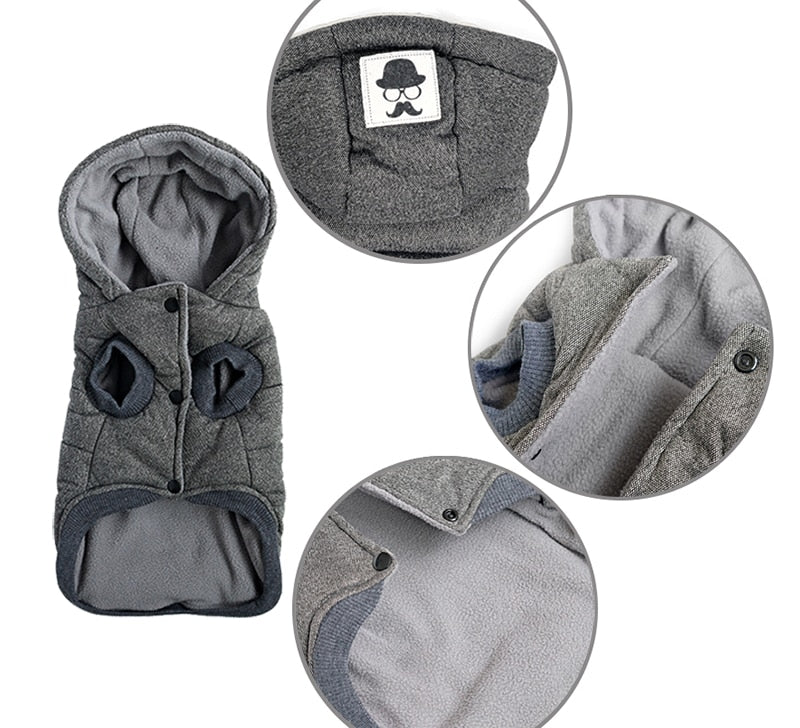 Thick Winter Dog Jacket- Hooded Cotton Warm Coat jacket for Dogs Cats Puppy & Kittens S-XXL - The Paw Empire