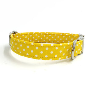 Summer Sunshine Dog Collar - Designer Collars for Dogs & Cats - The Paw Empire