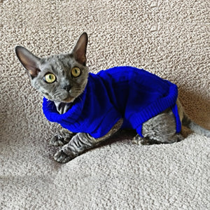 Funky Coloured Dog & Cat Coats & Sweaters-Winter Jackets Pet apparel - The Paw Empire