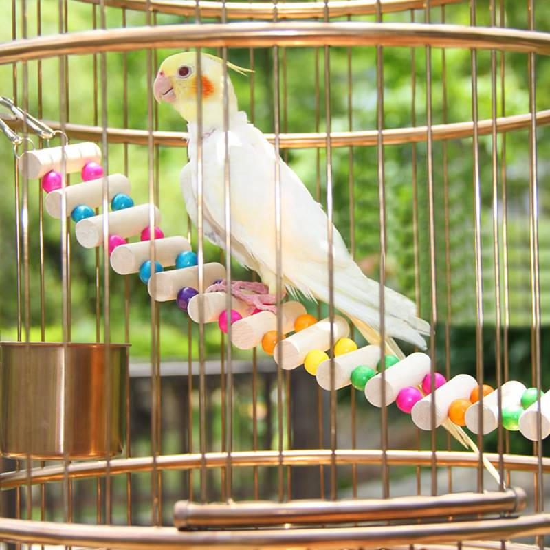 Bird Cage Drawbridge Ladder - Hanging Colourful Bird Perch Ladder - The Paw Empire