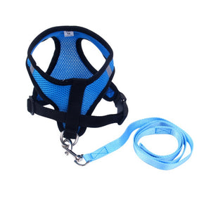 Matching Pet Harness and Leash Set - The Paw Empire