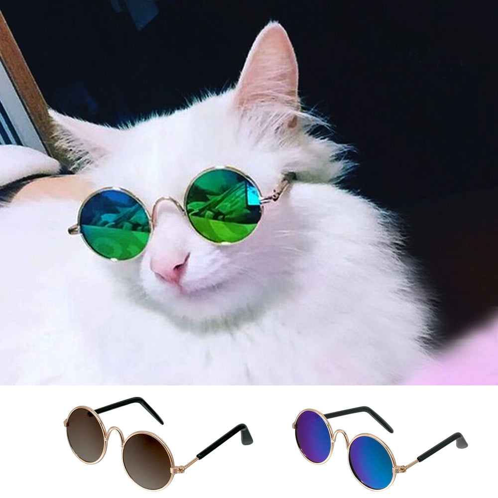 Cool Cat Sunglasses - Small Dog or Cat Instagram Prop Sunglasses - The Paw Empire
