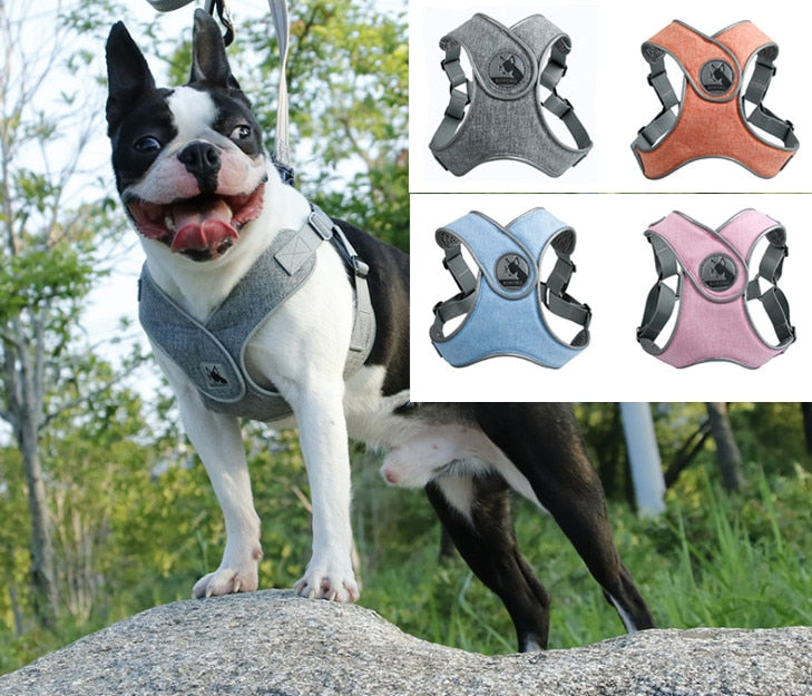 Dog Harness - Adjustable Air Mesh Harness & leads for Cats and Dogs  S, M, L - The Paw Empire