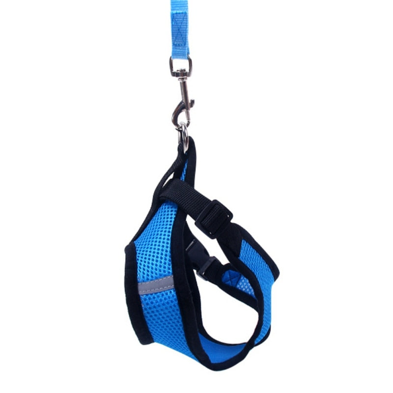 Matching Pet Harness and Leash Set - Dog and Cat Harness and Lead - The Paw Empire
