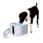 2L Automatic Pet Feeder for Cats & Dogs Pets Water Dispenser bowl - The Paw Empire