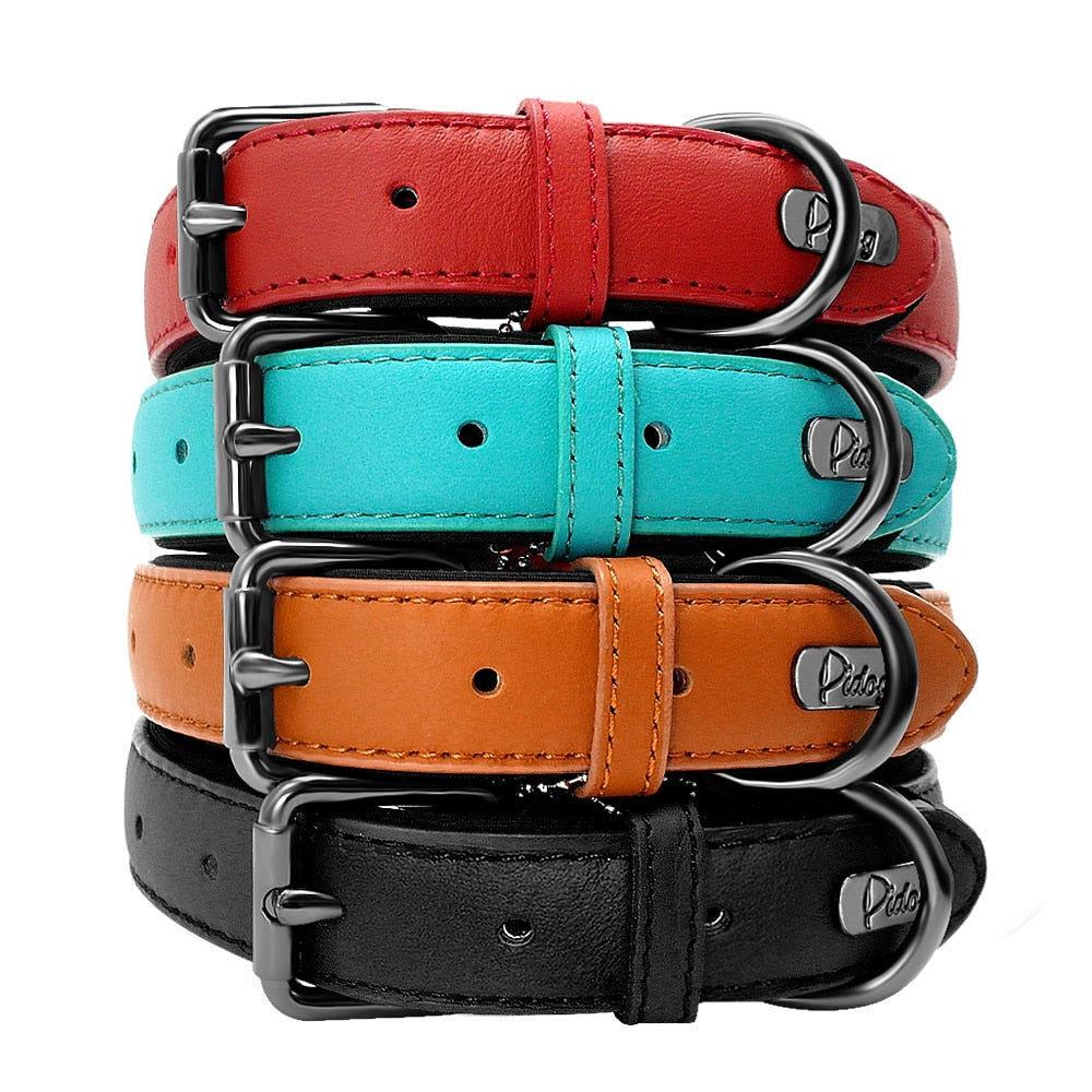 Genuine Leather Dog Collar - Padded Adjustable Collars For Small Medium Large Dogs - The Paw Empire