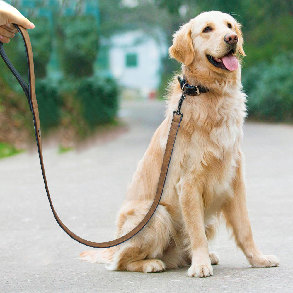 Genuine Leather Dog Leash -Heavy Duty Lead for Walking Running for Medium Large Pets - The Paw Empire