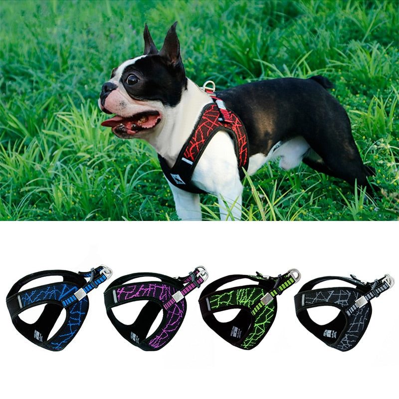 No-pull Sport Reflective Dog Harness -Dog Training &Walking Safety Vest - The Paw Empire