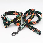 Funky Flowers Dog Collars- Designer Collars, bowties & lead sets for Dogs & Cats - The Paw Empire