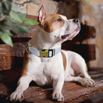 Personalized Nylon Dog Collar -Custom Engraved adjustable Dog Name Plates - The Paw Empire
